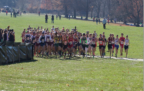 Cross-Country Team Runs Well at Meet of Champions