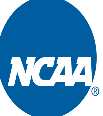NCAA Basketball Conference Preview