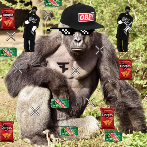 """""""Harambe: A Scientific Analysis"""""""