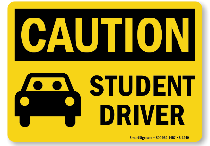 Featured Class: Driver's Ed
