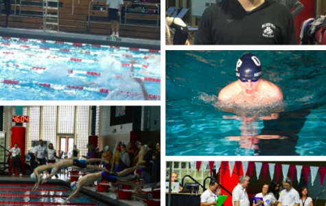 Interning with Swimming World Magazine