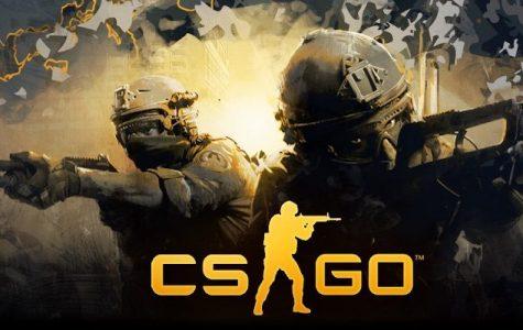 The Crash of the CSGO Market