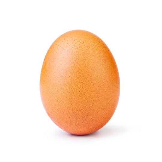The Egg that Took the World by Storm