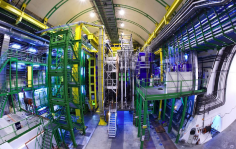 What the Large Hadron Collider Just Discovered Could Show Us Why We Exist