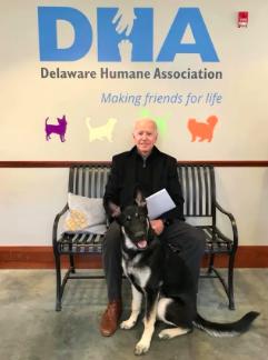Official adoption photo of Major by Joe Biden
