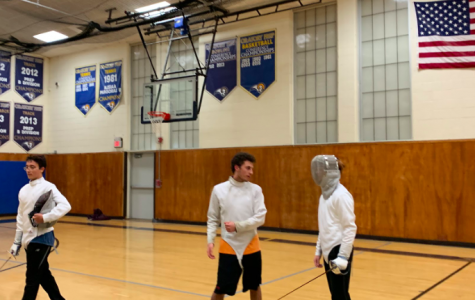 The Fencing Experience