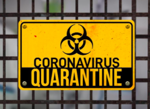 My Life in Quarantine